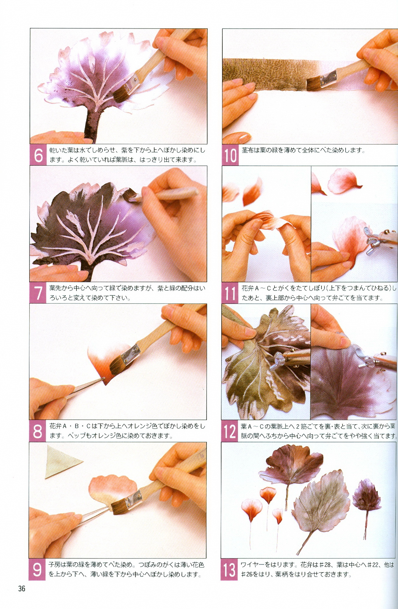 Reference Books Galelina Flowers
