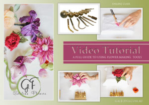 Video tutorial a full guide to using flower making tools on line in this video tutorial you will learn how to work with each of the most common flower making tools found in the majority of sets mightylinksfo